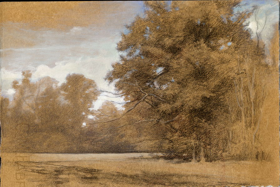 D jeffrey mims landscape drawing for What is landscape drawing